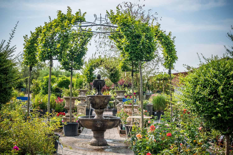Baumschule Garten Pflanzen Bäume Landschaftsarchitekt Gärtner